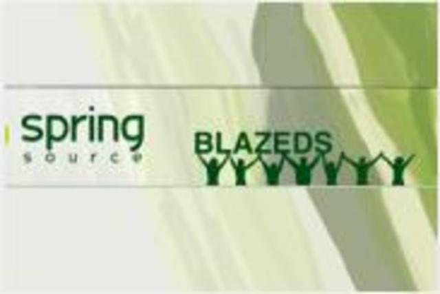 Spring BlazeDS Integration project