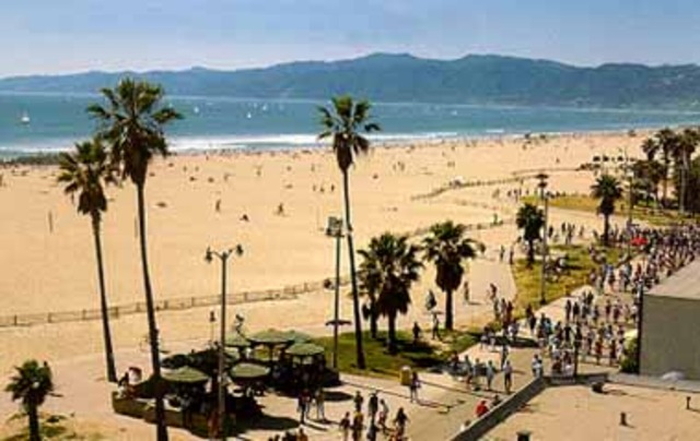 California amor