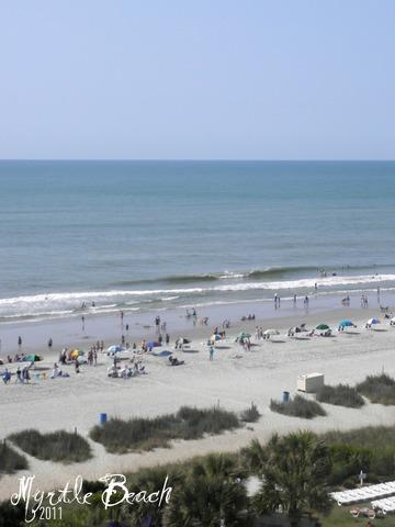 Hace un año que visité la playa de Myrtle.  Fui con mi familia y mi amiga Danielle.