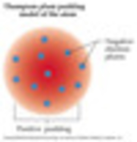 Plum pudding model- theory
