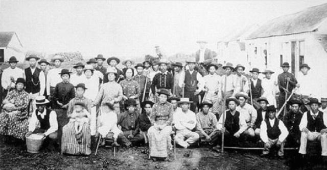 Japanese Immigration