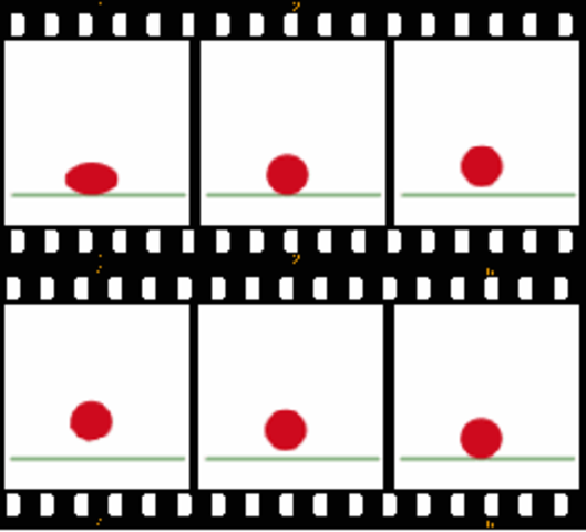 The First Animation