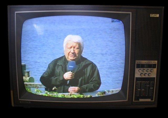 1990, los nuevos integrantes de la familia, ¡TV en color !