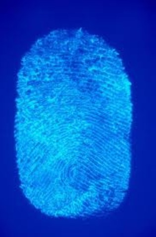 DNA fingerprinting was created