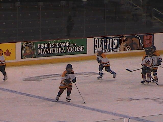 First year of hockey