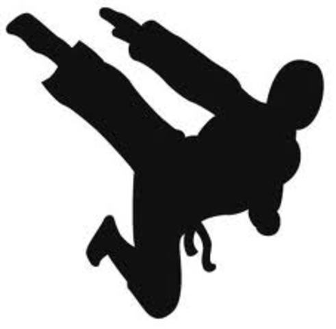 primeira aula de judo