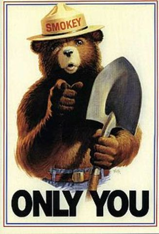 Smokey the Bear Rescued