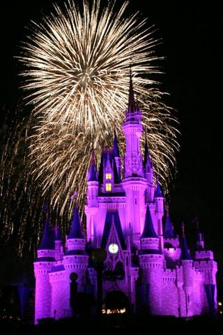 Mi Viaje a Disney World