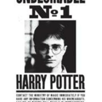 Harry Potter Timeline