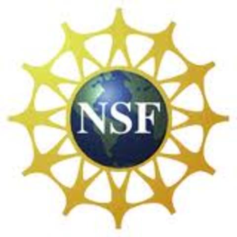 FUNDACION NACIONAL DE LA CIENCIA