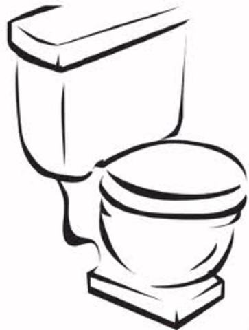 Cognitive: Toileting