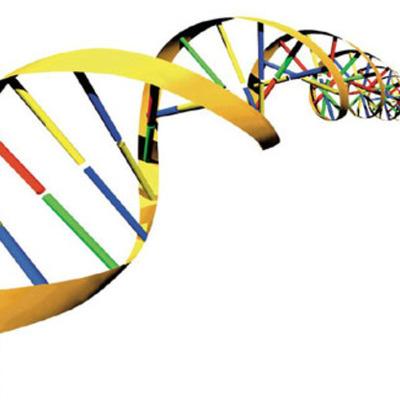 DNA Discoveries timeline