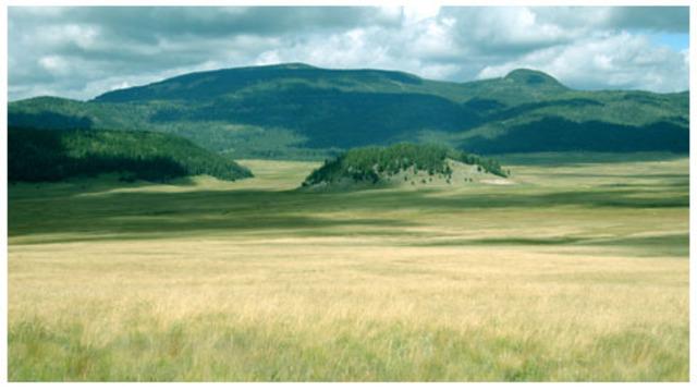Valles Caldera National Preserve established
