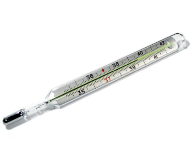 Gabriel Fahrenheit invents the first mercury thermometer.