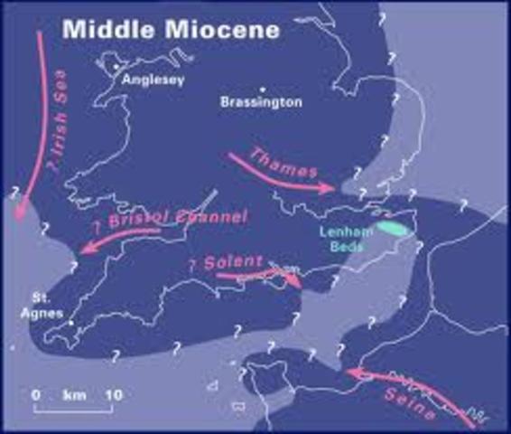Miocene Period 1:00pm