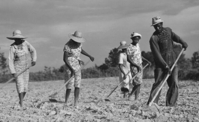 Sharecropping Begins