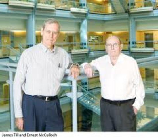 Till & McCulloch establish the foundation for stem cell science.
