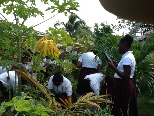 Students Begin to Use iPads in the Field