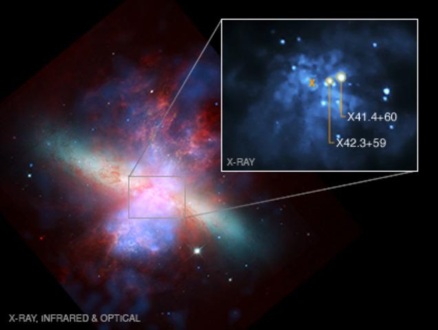 M82 Black Holes