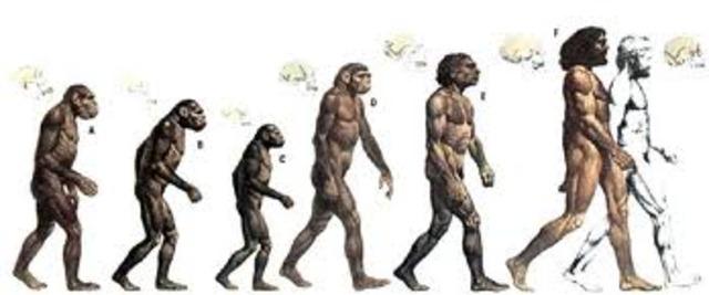 (Evolution) Descent of Man [INFLUENTIAL]