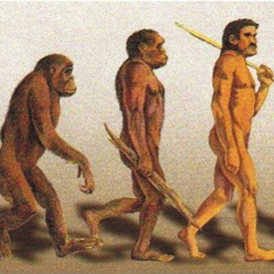 CIENTÍFICOS QUE APORTARON ARGUMENTOS A LA TEORÍA DE LA EVOLUCIÓN timeline