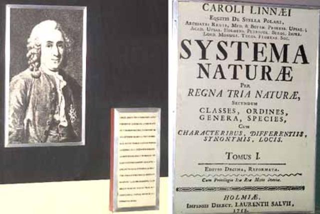 Linneo y el Systema Naturae.