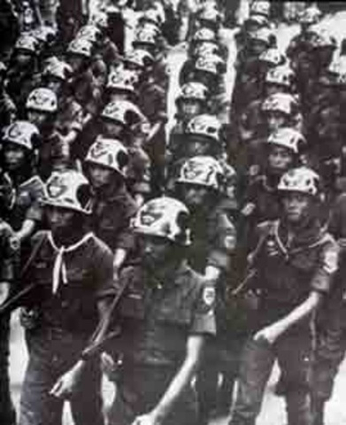 Formation of the Viet Cong