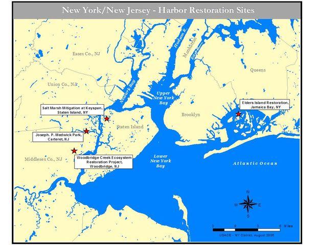 Verrazzano lands in New York
