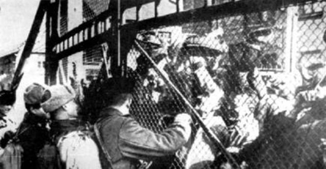 Röda armén befriar Auschwitz.