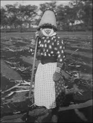 Oahu Sugar Strike of 1920