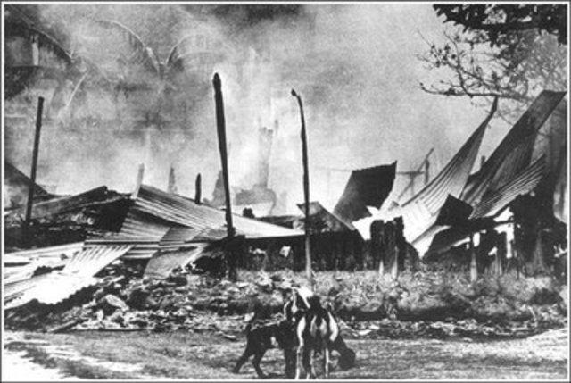 1971: Bangladesh War (Genocide)