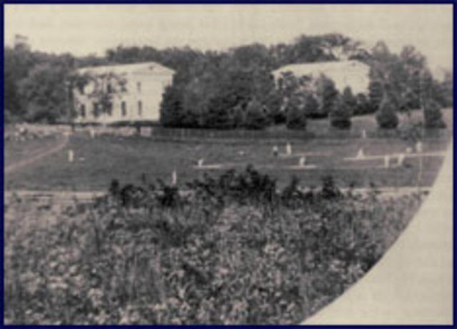 The First Baseball League