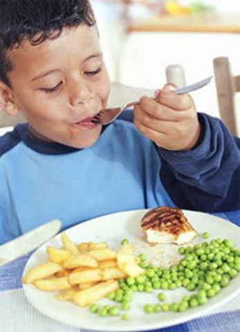 Alimentación en los niños de 5 Años