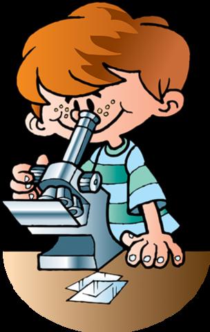Изучаем TinyMCE. Элементы курса: Страница, Опрос, Анкета,Внешние инструменты (External Tools), Пояснение