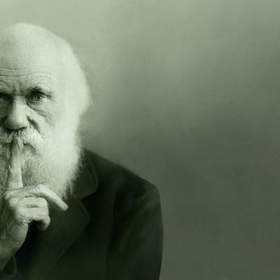 Timeline Darwin
