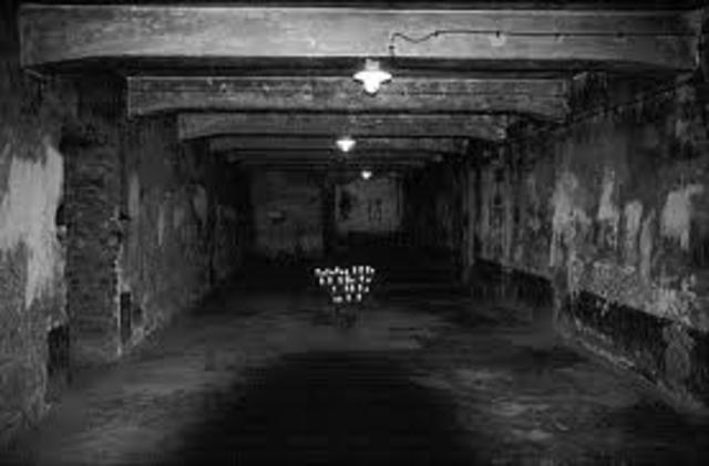 Gassing operations began at the Chelmno killing center.