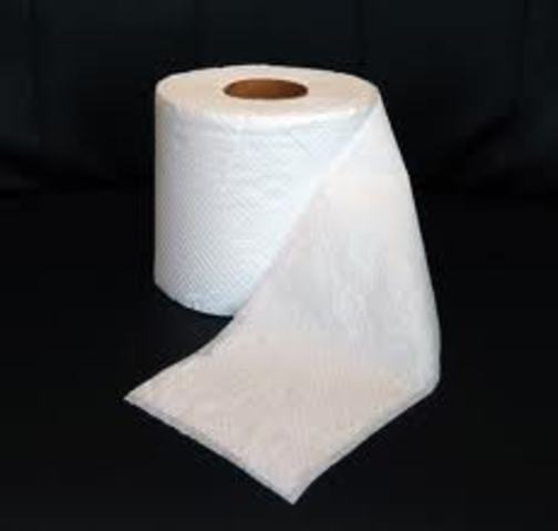 First reference to toilet paper in history