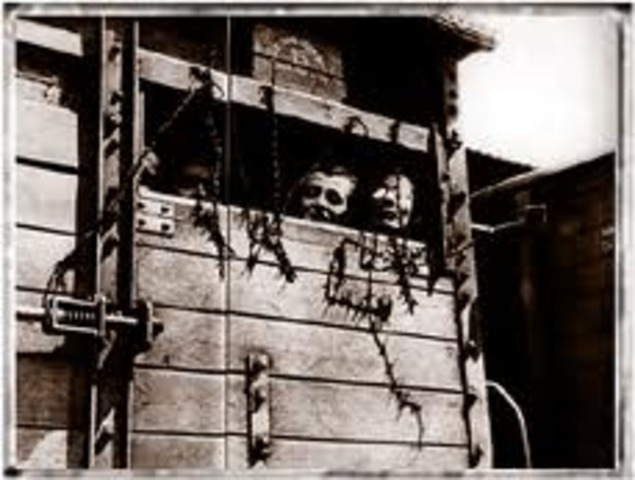 Jews from Sighet deported to Auschwitz