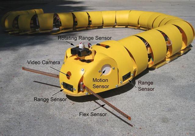 Robot serpent de Miller