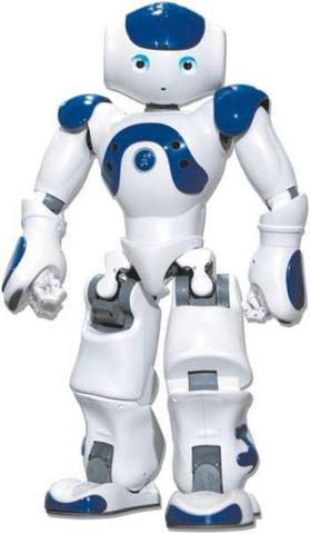Nao robot programmable