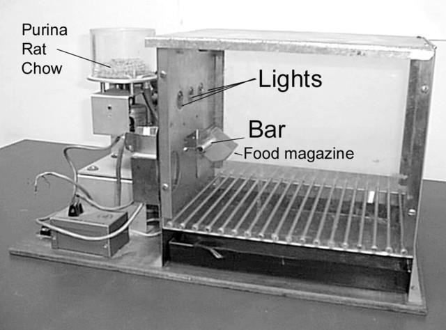 The Skinner Box Experiment