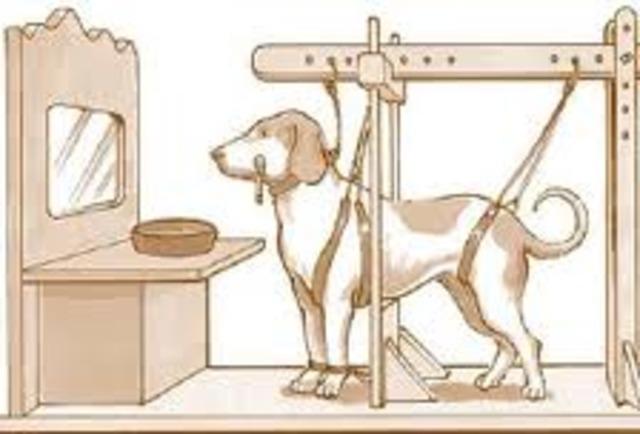 Ivan Pavlovs dog experiment