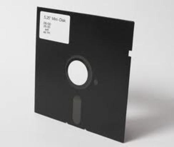 el disquete (disco flexible
