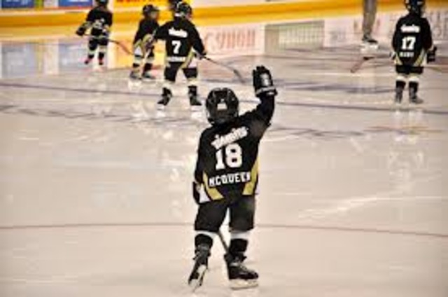 Started Hockey