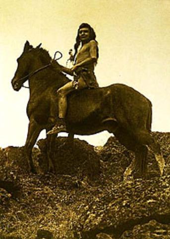 Meet The Nez Perce