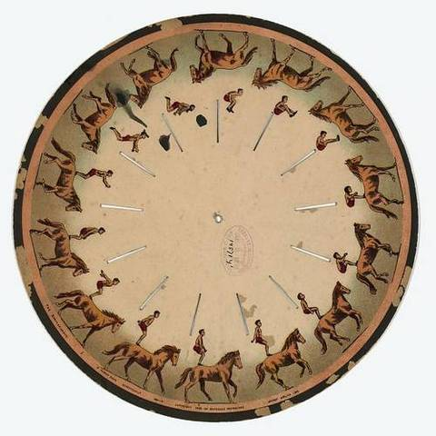 Zoopraxiscope Disk of a Horse Back Somersault