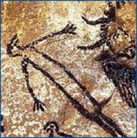 Drawings found on cave wall