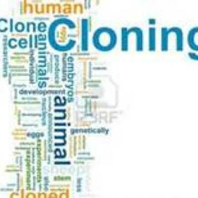cloning timeline