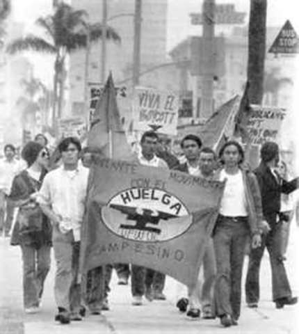 United Farm Workers Organizing Committee(UFWOC)