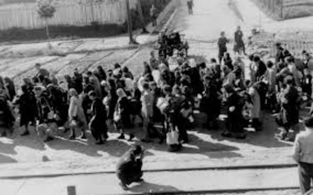 Chelmno death camp opens.